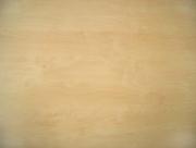 H 1733 ST9 Mainau Birch